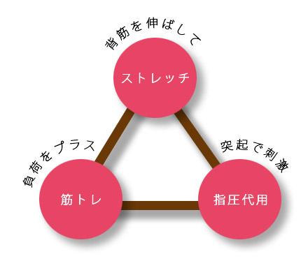 3シュルイの機能を持っている説明